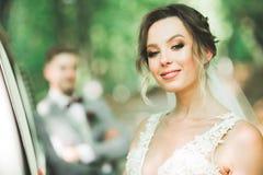 Роскошь поженилась пары свадьбы, жених и невеста представляя в старом городе стоковое фото rf