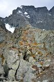 Россия, горы Altai, пропуск Kuiguk Kuyguk стоковое фото