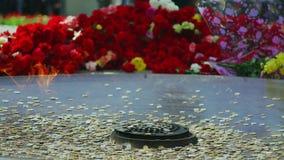 Россия, Новосибирск, 9-ое мая 2017 Вечное пламя, окруженное цветком сток-видео