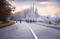 РОССИЯ - 11-ОЕ НОЯБРЯ 2015: Неопознанные рыболовы идут на winte Стоковые Фотографии RF