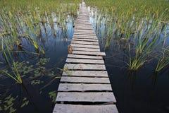 Россия. Осень. 13 стоковые изображения