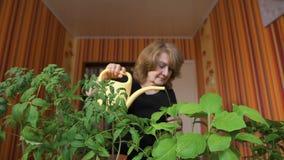 Ростки счастливого зрелого женского садовника моча дома видеоматериал
