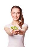 Росток в женской руке Изолировано на белизне Стоковое Изображение
