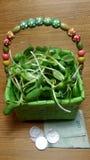Росток солнцецвета в корзине Стоковые Фотографии RF