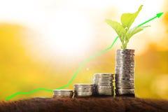 Рост денежной массы с монеткой стога Стоковое фото RF