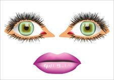 рот глаз Стоковые Изображения RF