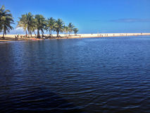 Рот реки Jacuibe, на побережье Бахи стоковые изображения rf