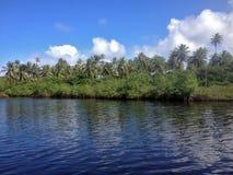 Рот реки Jacuibe, на побережье Бахи стоковая фотография rf
