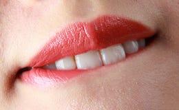 рот Стоковая Фотография