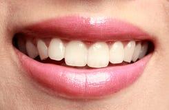 рот Стоковое Изображение