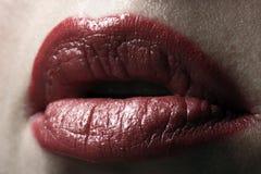 рот Стоковые Фотографии RF