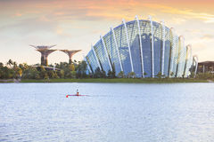 Роща Сингапура Supertree и сад облака Стоковые Изображения RF