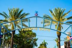 Роща Delray Beach ананаса Стоковые Изображения RF