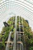 Роща Supertree, лес облака & купол цветка на садах Стоковая Фотография RF