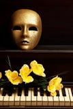 рояль маски золота Стоковые Изображения RF