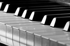 рояль Стоковые Фото