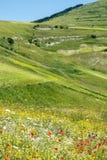 Рояль Большой di Castelluccio (Италия) Стоковые Фотографии RF
