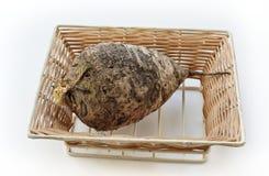 Род †редиски» малый одиночных и постоянных herbaceous заводов Стоковые Изображения RF