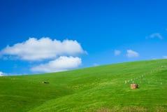 Родовая зеленая холмистая обрабатываемая земля Стоковые Фотографии RF