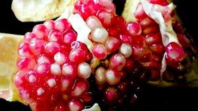 Рубин, гранатовое дерево Стоковые Изображения RF