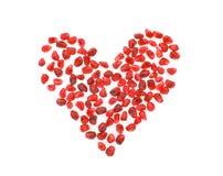 рубин сердца Стоковая Фотография