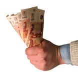 рублевки федерирования валюты русские Стоковое Изображение RF