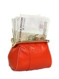 100 рублей в вашем бумажнике Стоковые Фотографии RF