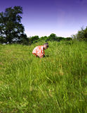 рудоразборка девушки цветков младенца Стоковое Фото