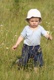 рудоразборка маргаритки мальчика Стоковые Фото
