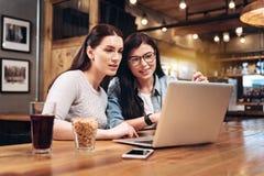 2 дружелюбных девушки смотря экран компьютера Стоковые Изображения