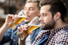 друзья пива выпивая Стоковая Фотография
