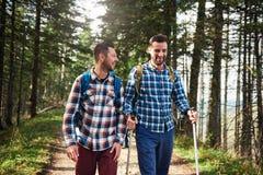 2 друз говоря совместно на следе в лесе Стоковые Фотографии RF