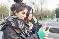 2 друз женщины утехи битника используя умный телефон Стоковое Изображение RF