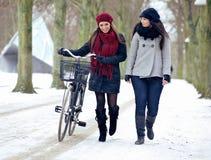 2 друз идя совместно на Snowy Outdoors Стоковая Фотография RF
