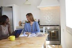 2 друз работая на кухонном столе смотрят один другого Стоковые Изображения