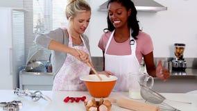 2 друз самонаводят печь совместно сток-видео