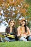 2 друз сидя совместно Стоковое Изображение RF