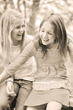 2 друз смеясь над на шутках Стоковое Изображение RF