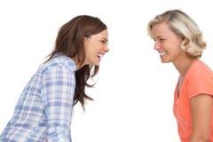 2 друз смеясь над совместно Стоковое Изображение RF
