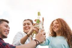 3 друз clinking с бутылками Стоковое Изображение