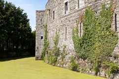 руина укрепленная замоком историческая Стоковое Изображение