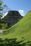 руина belize майяская Стоковые Изображения RF