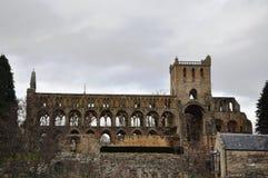 Руины аббатства Jedburgh Стоковое Фото