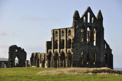 Руины аббатства Whitby стоковые изображения rf