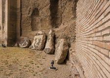 Руины ванн Caracalla - Terme di Caracalla Стоковая Фотография RF