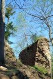 Руины в лесе Стоковая Фотография RF