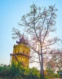 Руины дворца Ava королевского, Мьянмы стоковое фото rf
