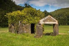 Руины дома в свежей природе стоковые фотографии rf