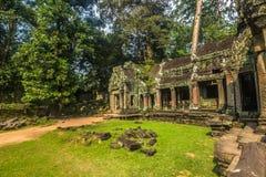 Руины животиков Prohm, Камбоджи стоковая фотография rf