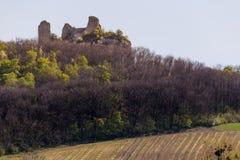 Руины замка на холме стоковое фото rf